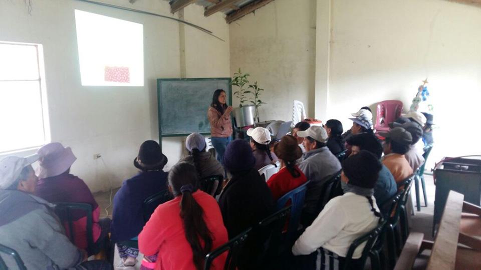 Capacitación en Manejo y Cultivo de Aguacate  Comunidad de Pilacoa – Cantón Sigchos, Cotopaxi